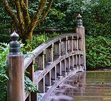 Slippery Bridge by Don Schwartz