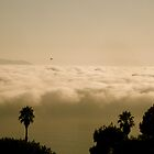 Dragonfly Over Catalina by oftheessence