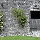 English Garden Wall by Stephen Horton