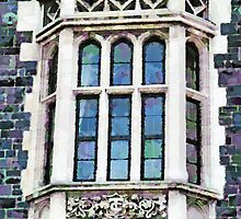 The Heritage Windows of the Teachers' College by PictureNZ