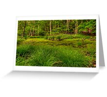 The Swamp Revisited Greeting Card