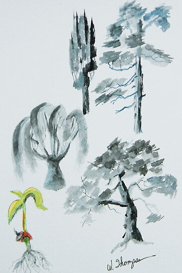 Tree Evolution by Warren  Thompson