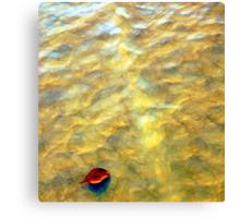 SunShine Drift Canvas Print