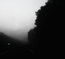 Driving into the mist by ShellyKay