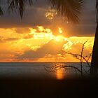 Cuban Sunrise by vette