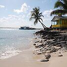 Bahamas Beach by Sweetpea06
