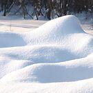 Fresh snow cover by Arve Bettum