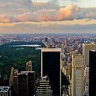 Central Park from the Top of the Rock by mikeyg2000