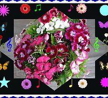 Sweet Williams for Deborah by BlueMoonRose