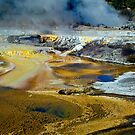 Thermal Pools, Rotorua by DavidsArt