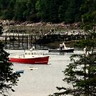 Owls Head Harbor Maine by wallace66