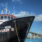 &quot;Lady D&quot; docked at Potter&#x27;s Cay in Nassau, The Bahamas by 242Digital