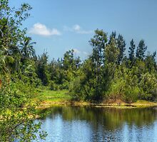 The lake at Paradise Island in Nassau, The Bahamas by 242Digital