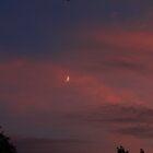 Plane Moon by Adam Kuehl