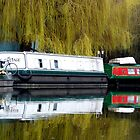 Regent's Canal by Federica Gentile