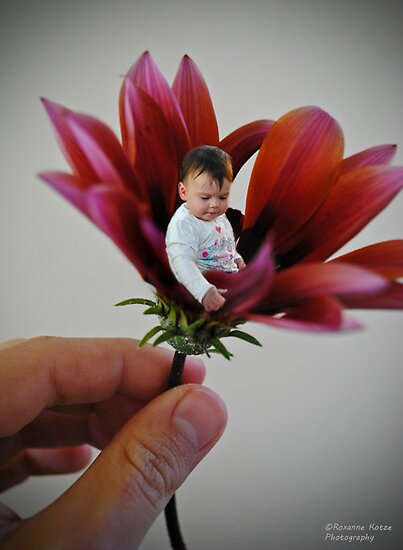 Flower Baby by PhotoFox