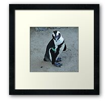 I am Karl, the Warden of the Zoo Framed Print