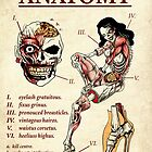 Zombie Pin-up Anatomy Art Pint by ScreamingDemons