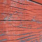 Red Painted Wood by Karen Jayne Yousse