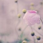 Vintage Bobble Flower by Shutterbug21