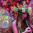 Faerie Music by shutterbug2010