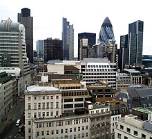 View from the Monument - London by Federica Gentile