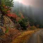 The Rush To Fall by Charles &amp; Patricia   Harkins ~ Picture Oregon