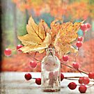 An Autumn Still Life by Shelly Harris