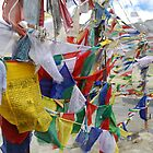 Prayer Flags by Laura Potter-Dunn