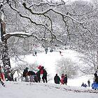 Winter Wonderland by scotts03