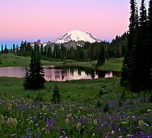 Pastel Skies Over Rainier by Marcus Angeline
