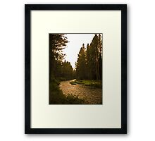 river highway Framed Print