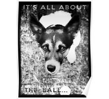 Terrier Obsession: It's All About The Ball - Black and White Remix Poster