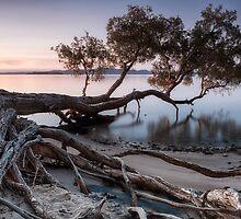 WATERCOLOUR by Michael Howard