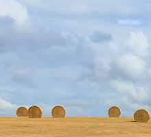 Rural idyll - straw bales on the harvested field by pixelnest