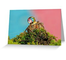 full colors Greeting Card