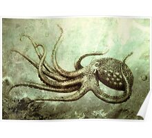 Octopus 2 Poster
