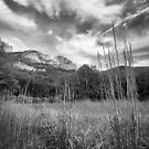 Seneca Rocks by LeeAnne Emrick