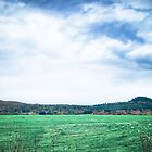A Green Field under Turbulent Clouds and Sky by Chantal PhotoPix
