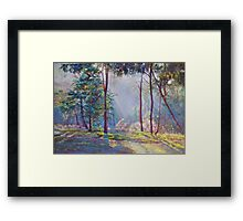 Symphony of Bush Colours 2 Framed Print