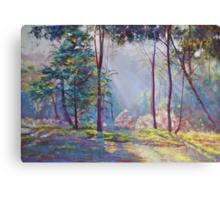 Symphony of Bush Colours 2 Canvas Print