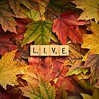 LIVE-Autumn by onyonet photo studios