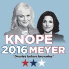 Knope/Meyer 2016 by alxqnn