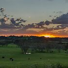 Sunset in the fields by Jessy Willemse
