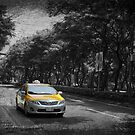 A yellow Taipei Taxi by redmgb