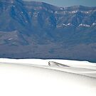 White Sands by David DeWitt