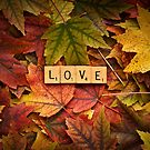 LOVE-Autumn by onyonet photo studios