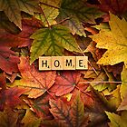 HOME-Autumn by onyonet photo studios