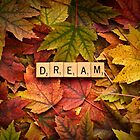 DREAM-Autumn by onyonet photo studios