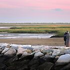 Watching the Sunset - Provincetown Massachusetts by Debbie Pinard